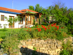 Gallipoli Houses bed and breakfast